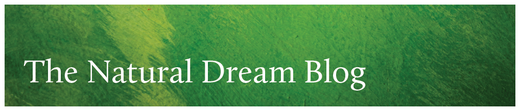The Natural Dreamwork Blog Header